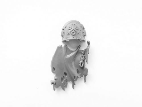 plague marine shoulder pad (j)